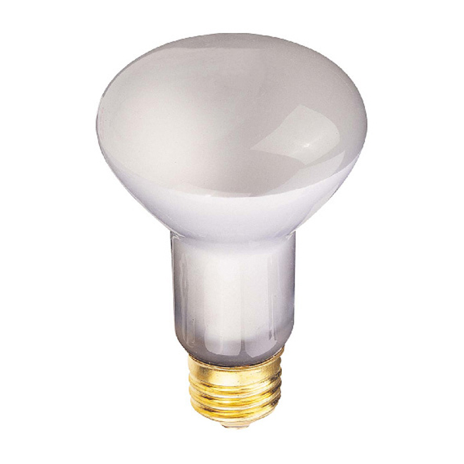 R14 Incandescent Bulb - 25 W - Frosted - 1/Pk