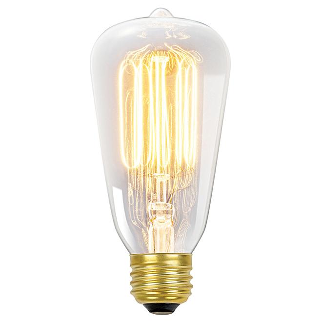 Ampoule S E-26, intensité variable, blanc doux, PK1