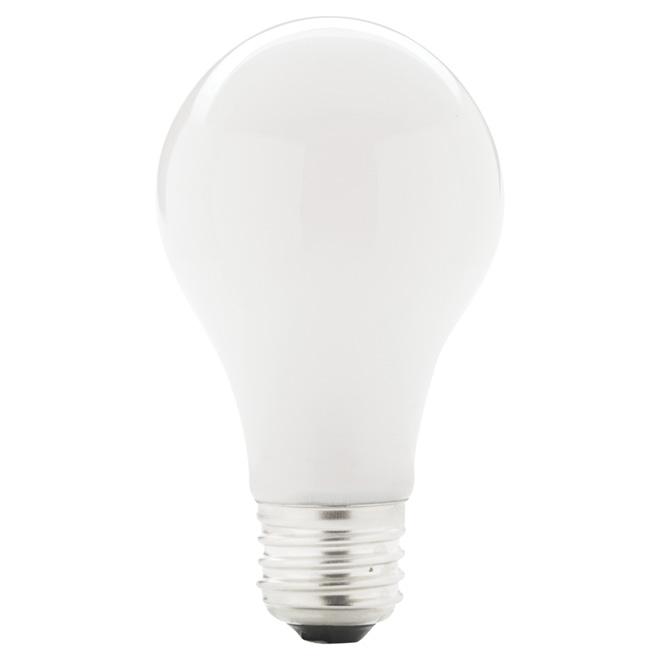 Paquet de 4 ampoules halogènes blanc doux A19 de 43 W