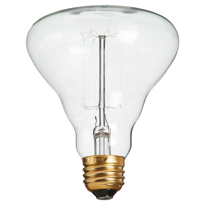 40W Incandescent Vintage - Style BR30 Light Bulb