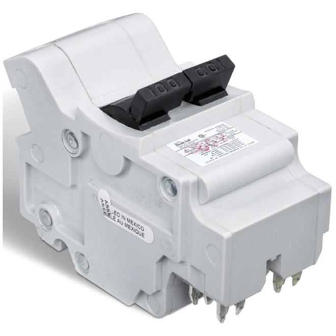 100-A 2P (NC) Circuit Breaker