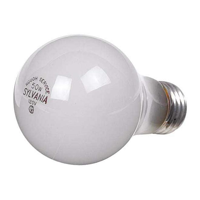 Ampoules anti-choc A19