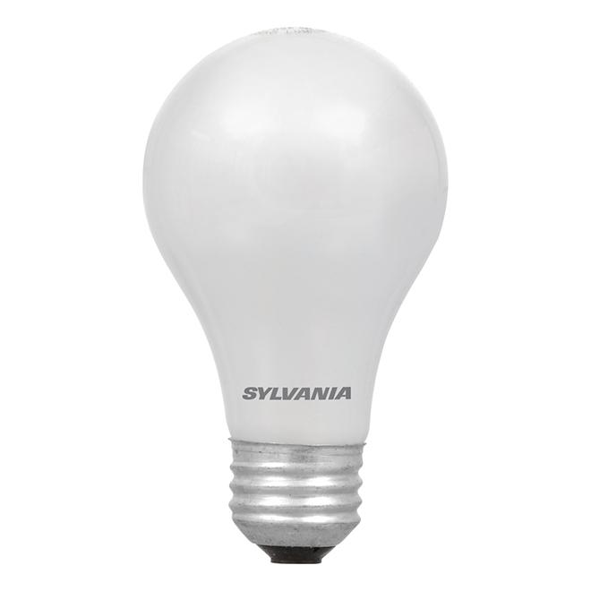 Ampoule A19 E26, intensité variable, blanc doux, PK4