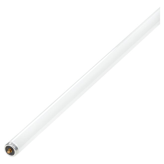 "Tube fluorescent Slimline T12 60 W, 96"", blanc froid"