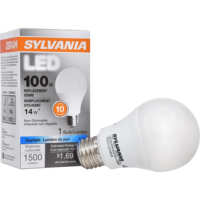 Ampoule DEL A19 E26, Intensité n-variable, lumière du jour, PK1