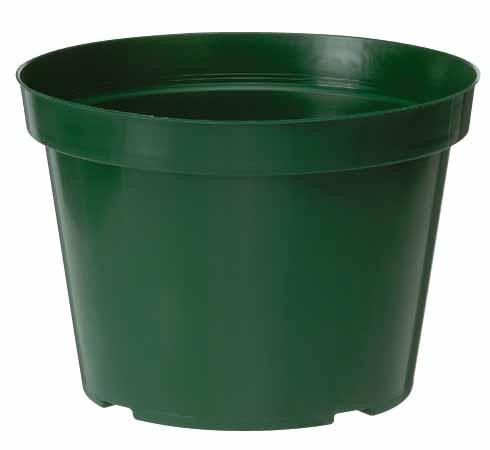 8-in Flower pot