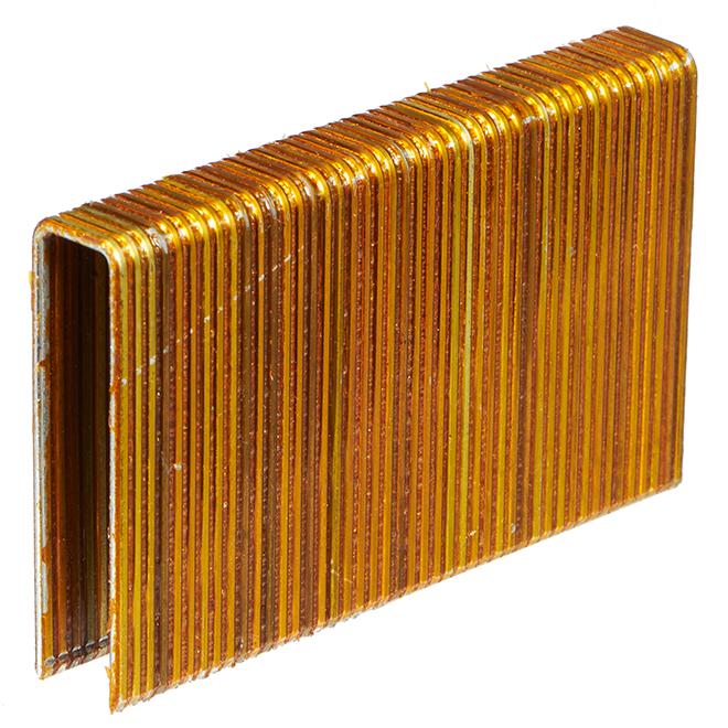 """Flooring Staples - Galvanized - 2"""" - Gauge 15 - 10,000/box"""