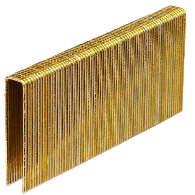 Agrafes de construction, galvanisé, 2'', boîte de 10 000