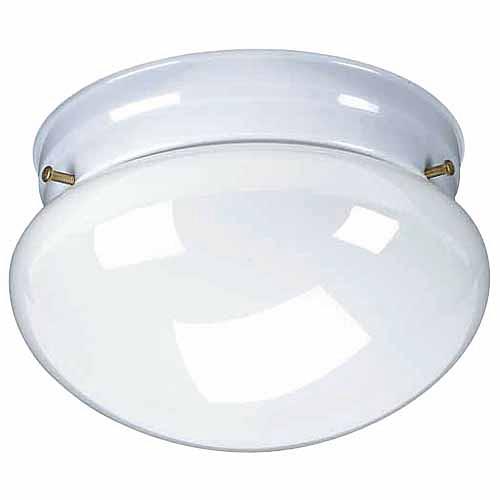 1-Light Ceiling Fixture