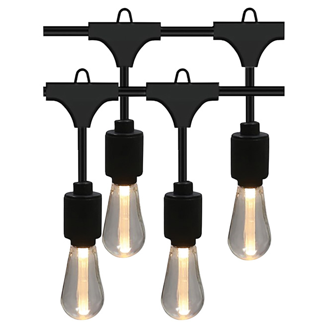 String Lights - 10 LED Warm White Lights - Edison