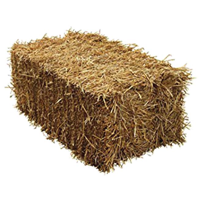 "Decorative Bale of Straw - Regular Size - 34-38"" - Gold"