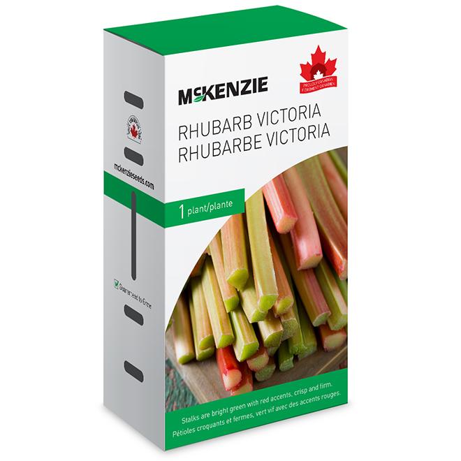 Rhubarbe Victoria Mckenzie, comestible