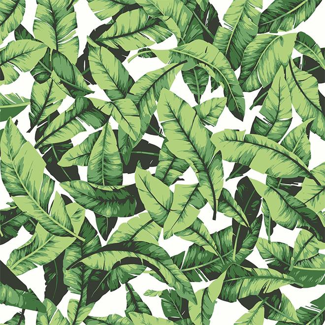 "Palm-Leaf Design Wallpaper - Green - 20.5"" x 16.5'"