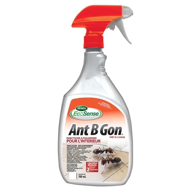 Vaporisateur intérieur pour insectes nuisibles « Ant B Gone »