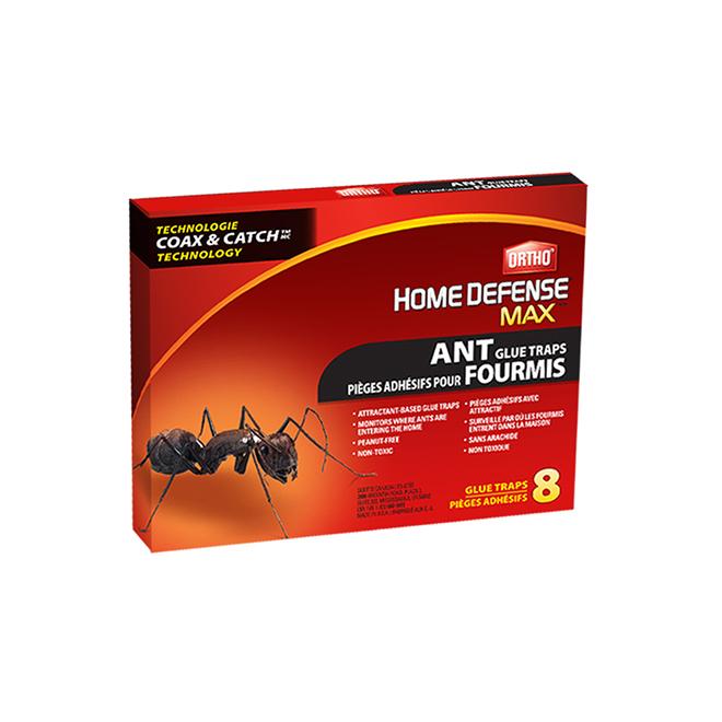 Piège à fourmis adhésifs - Paquet de 8