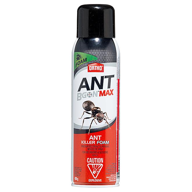 Ant Killer Foam - Ant B Gon Max(TM) - 400 g