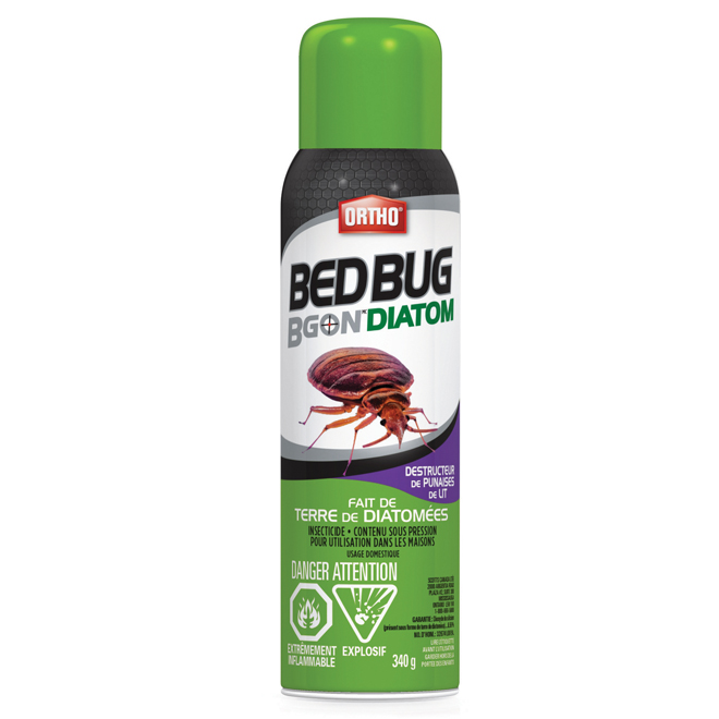 Insecticide aérosol pour punaises Bed Bug B Gon Max, 340 g