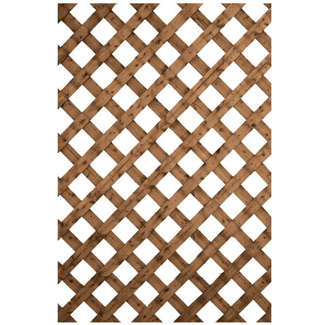 Treillis traditionnel en bois traité, brun, 4' x 8'