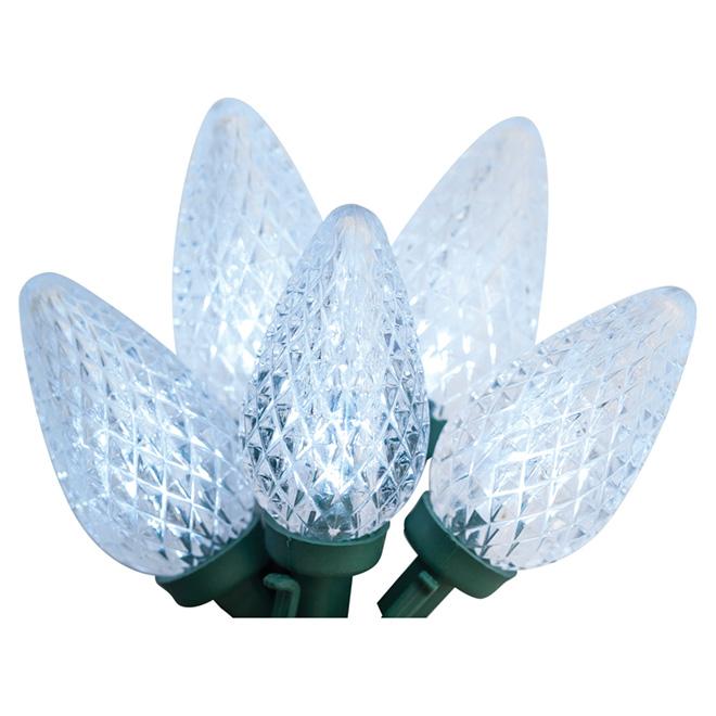Set of 150 Lights - Interior/Exterior - LED C9 - Cool White