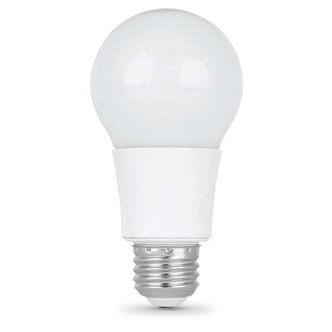 Ampoule A19 E26, intensité variable 13,5 W, blanc doux