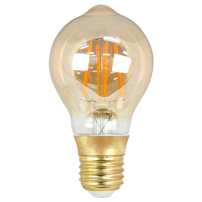 Ampoule DEL A19, intensité variable 4 W, blanc doux