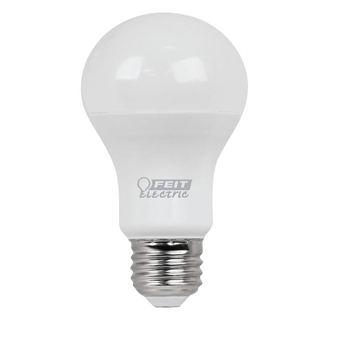Ampoule A19 E26, blanc chaud, 10/pqt