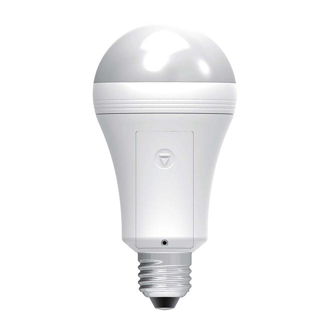 Ampoule EverBright A19 E26, Intensité n-variable, blanc chaud, PK1