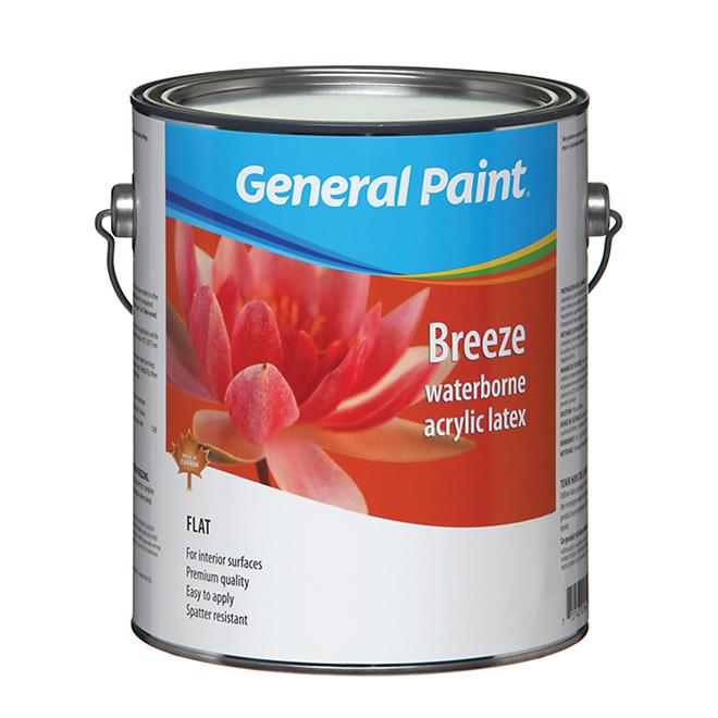 Flat Finish Interior Latex Paint