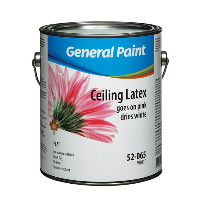 Interior Ceiling Latex Paint