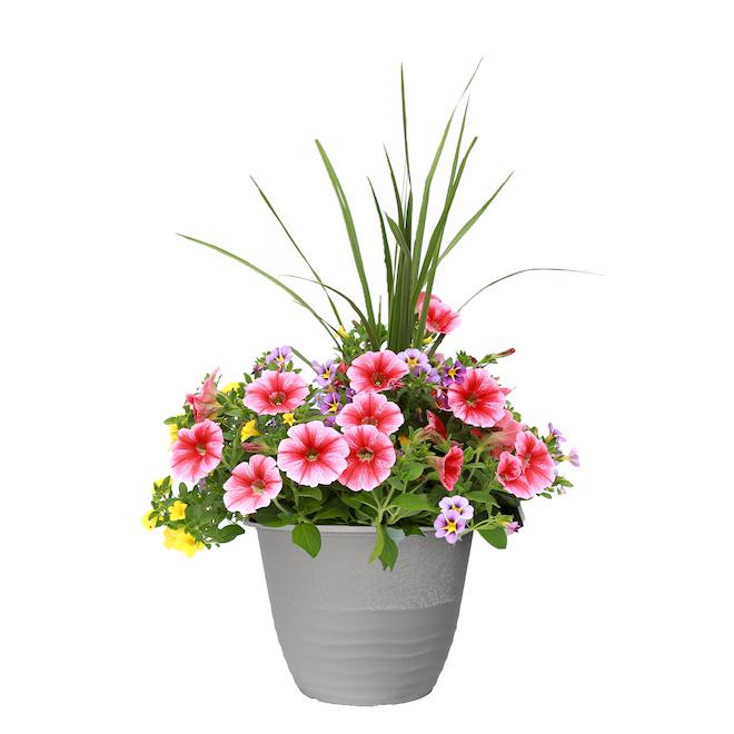 Arrangement de fleurs, pot de 13 po, couleurs assorties