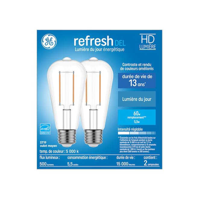 Ampoules DEL GE Refresh(MC) ST19 de 5,5 W, lumière de jour, 2/pqt