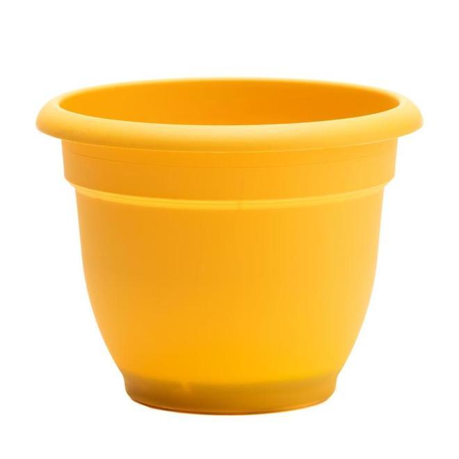 Jardinière classique Bloem Ariana en résine, 10 po, jaune
