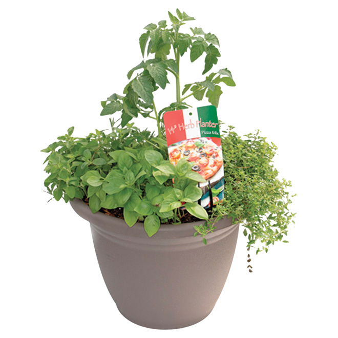 Vegetables and Herbs Planter