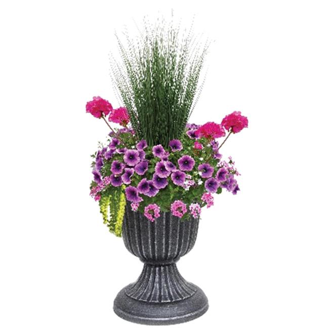 Arrangement de plantes extérieures, urne de 16'