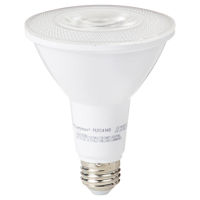 Ampoule DEL PAR30 12 W, intensité variable, lumière du jour