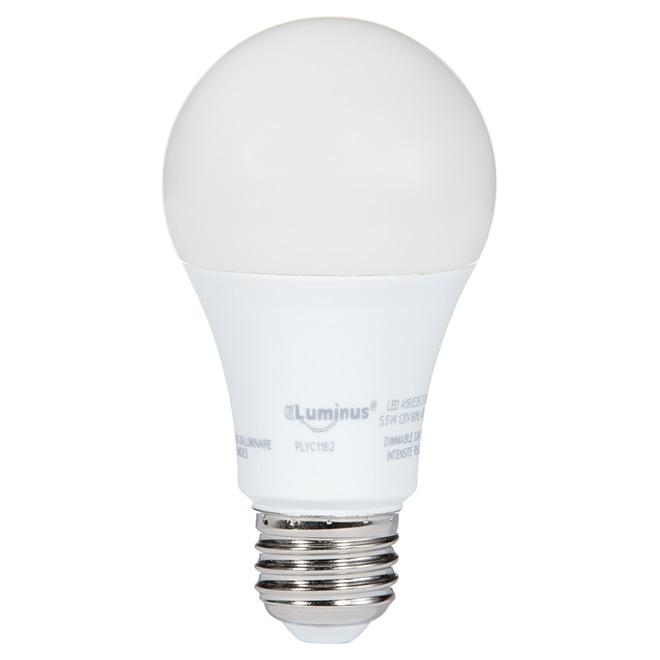 Ampoule DEL 5,5W A19, intensité réglable, blanc chaud
