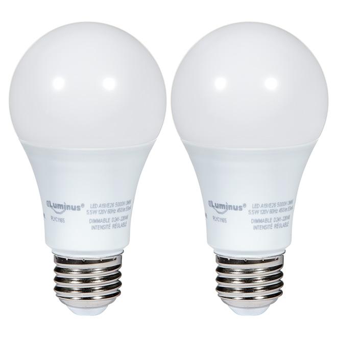 Ampoule DEL A19, 5,5 W, lumière de jour