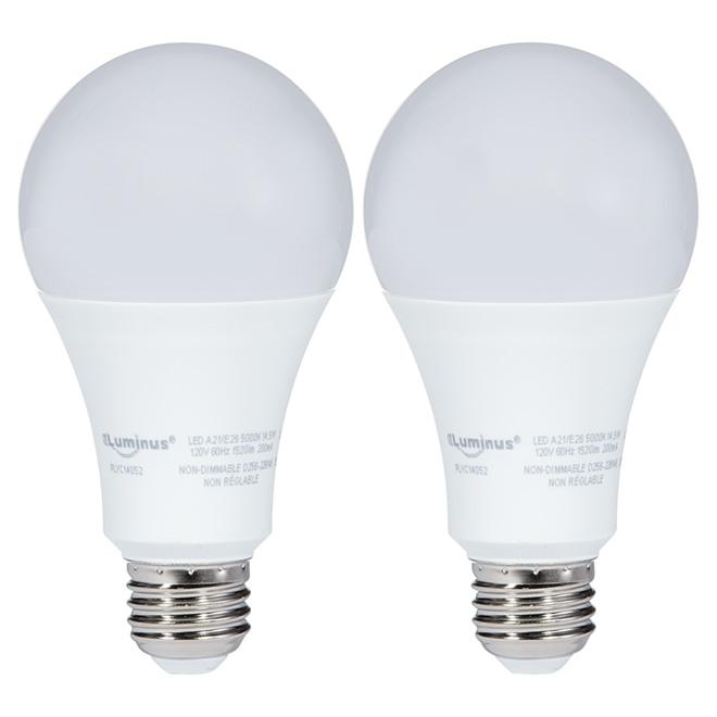Ampoule DEL A21 14,5 W, non variable, lumière du jour, 2/pqt