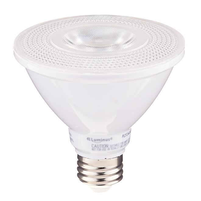 LED Bulb - PAR30 - Soft White