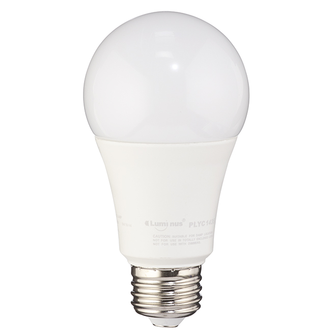 Ampoule DEL A19 15 W, non-variable, lumière du jour
