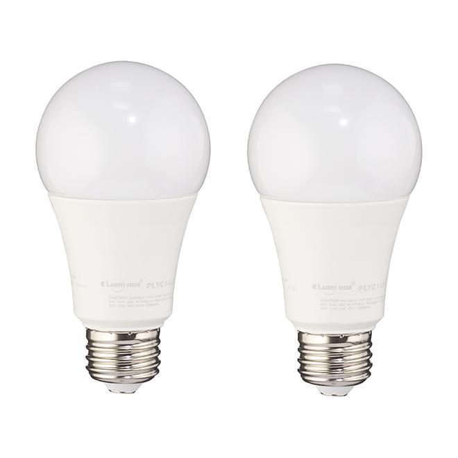 Ampoule DEL A19 15 W, non-variable, lumière du jour, 2/pqt