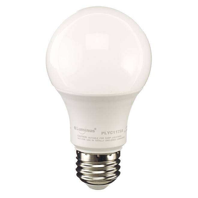 Ampoules DEL A19, 6W, intensité variable, blanc chaud