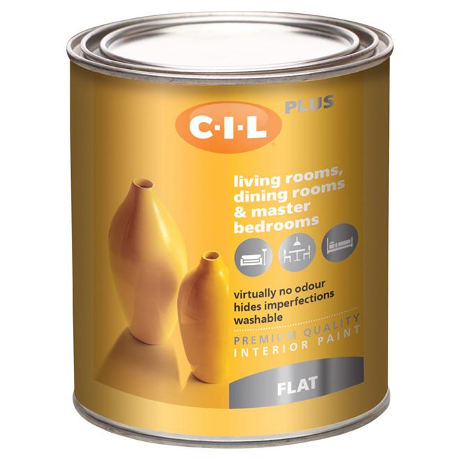 Latex Interior Paint