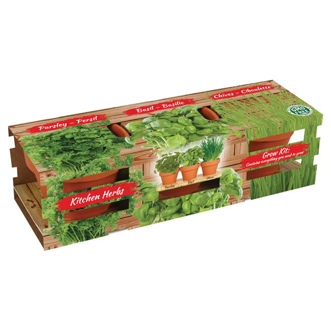 totalgreen trio herbes aromatiques d 39 int rieur bulbes. Black Bedroom Furniture Sets. Home Design Ideas