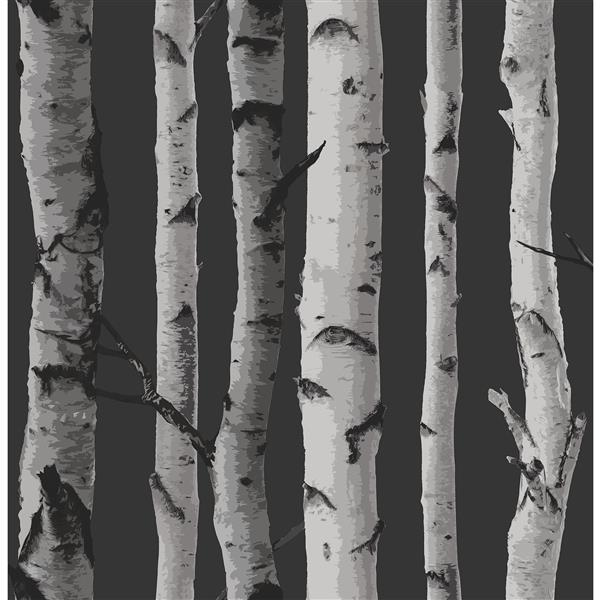 Brewster Wallcovering Birch Tree 20.5-in Black Paste The Wall Wallpaper