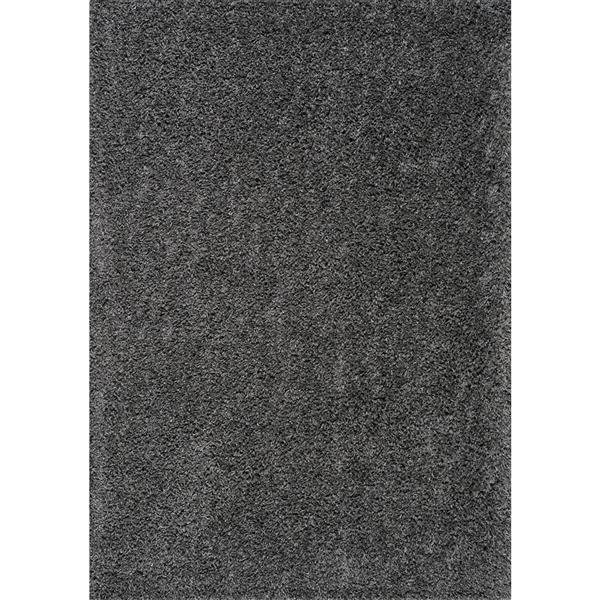 Kalora Plateau Soft Shag Rug - 2' x 4