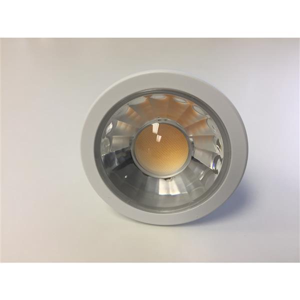 Ampoule à DEL, 10 pqt, blanc