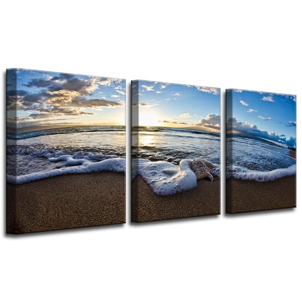 Ready2HangArt Sea Star Canvas Wall Décor Set - 48-in - Blue - 3 Pcs