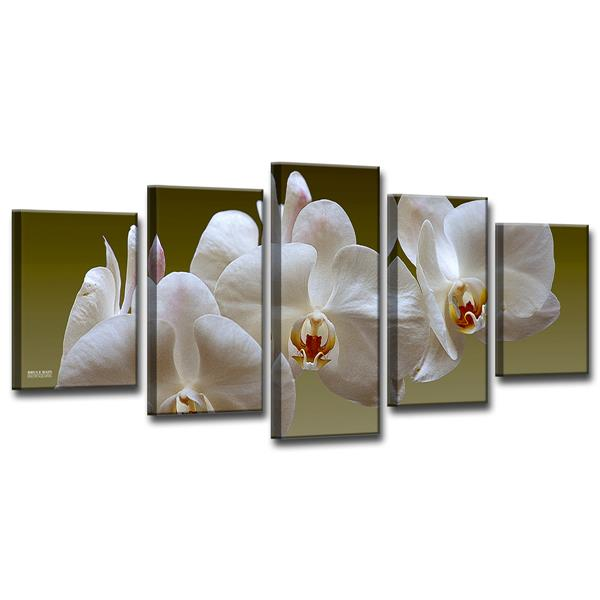 Ready2HangArt White Orchid Canvas Wall Décor Set - 60-in - White - 5 pcs