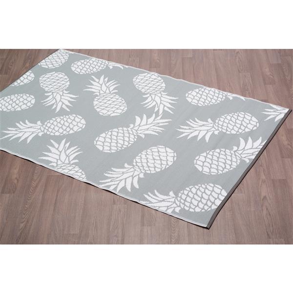 Erbanica Pineapples Outdoor Plastic Grey Rug - 4' x 6'